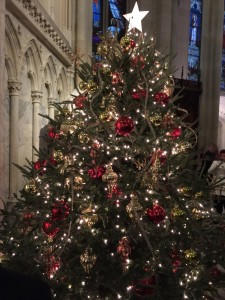 Christmas tree at St. Patrick's Cathedral.