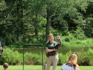 Birds of Prey Show at the Discovery Center.